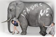 Big Elephant - Self Defense Today - The Elephant in the Room!