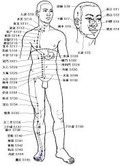 Pressure Point ST-35 - Attack the Knees! Great Self Defense information.
