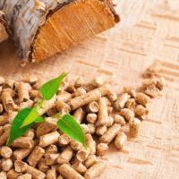 Bien choisir les granulés de bois