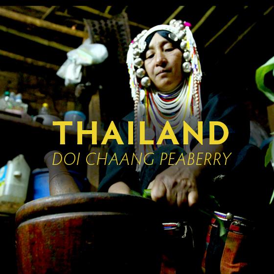 webgfx-thailand