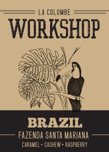 brazil-fsm-cropped