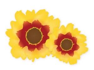 fleur_04-09_gazon-Japonais