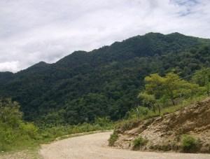 Honduras-TreesForTheFuture