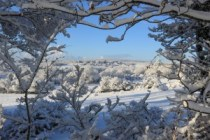 L'hiver en sécurité avec Lalema