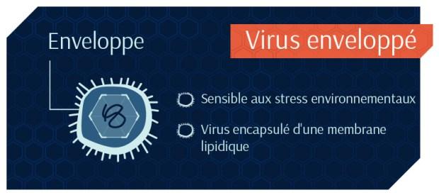 Virus-Enveloppé-Empêcher que ça ne devienne viral…