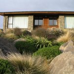 Subalpine beauty in the Mackenzie Basin - a Findaplant.co.nz article