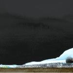 Ice garden to capture Antarctic life