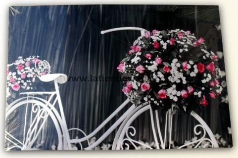 Lienzo bicicleta
