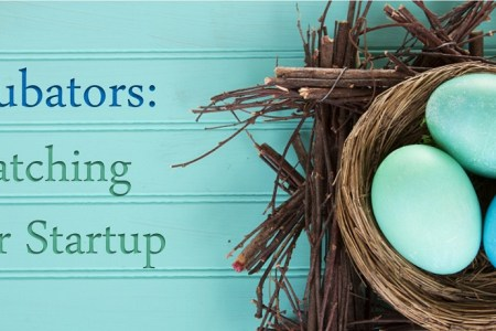 Incubators: Hatching Your Startup