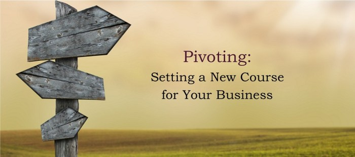 Pivoting:  Setting a New Course  for Your Business