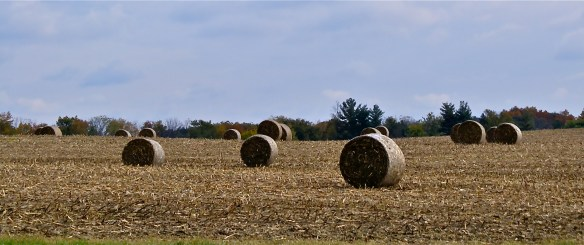 Roll hay in the fields of Central Indiana.