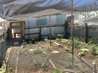 Garden is walled and netted on top.