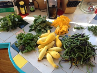 Beans, squash, from the garden.