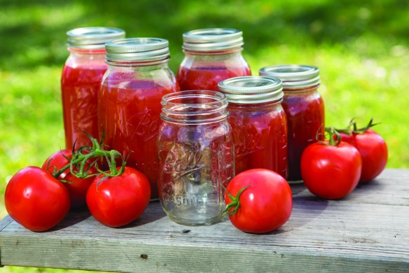 These classic clear glass jars have preserved literally tons of fruits and vegetables over the past 125 years. A true symbol of America's past, they still work great for today's home canning.