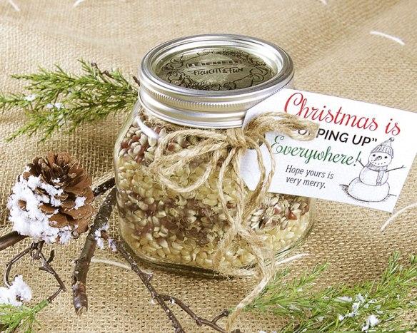 5-Minute Jar Gift - Popcorn