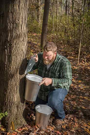 maple sugaring starter kit