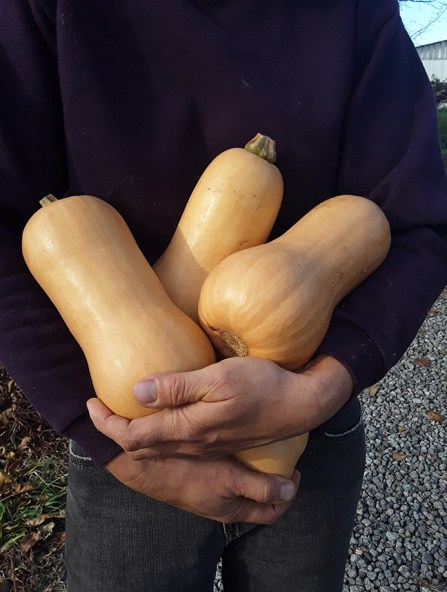 holding gourds