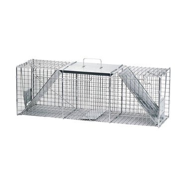 havahart large animal trap