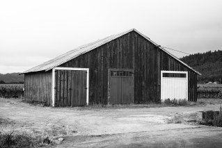 old-barn-napa-valley