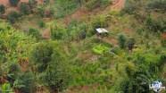 2017-Lemondelibre-myanmar-Kalaw-trek-paysage