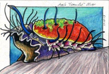 171013-abalone