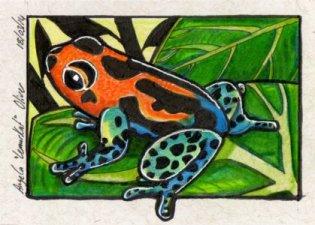 180314-dartfrog
