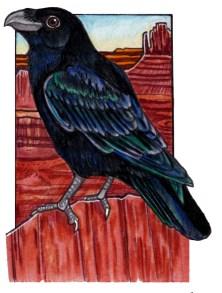 raven2
