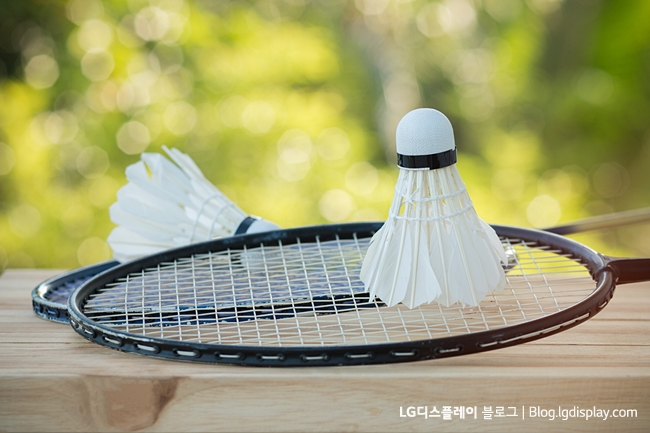 shuttlecocks on racket for a badminton on wood background, light green, outdoor background