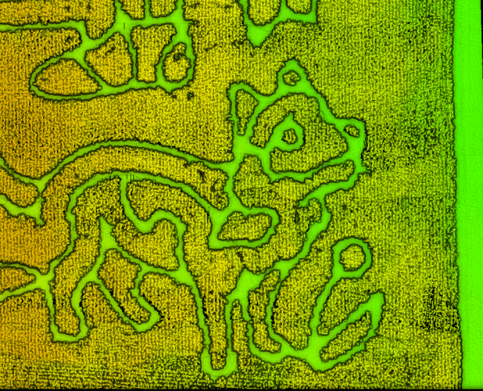 Image of Precision Agriculture Applied to Corn Maze