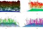 images of Lidar Survey Key to Improving Tree Segmentation