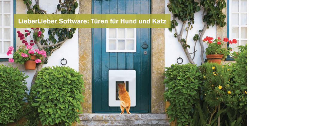 Petwalk_Slider Katze
