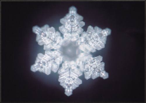 "Imagery of ""Truth"" from Dr. Emoto's Lab"