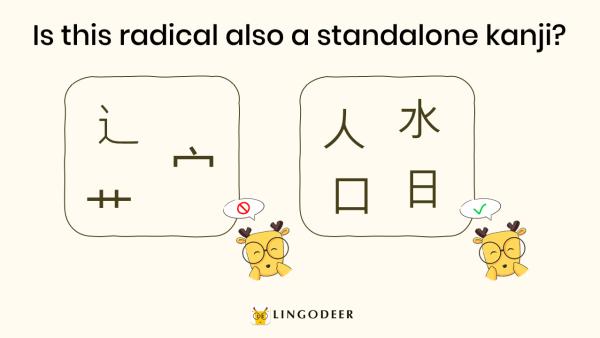 kanji radicals: some kanji radicals can be standalone kanji while some cannot