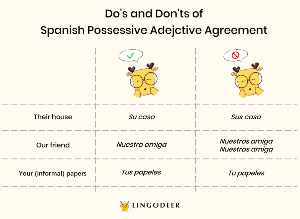 possessive pronouns in spanish: do's and don't of spanish possessive adjective agreement