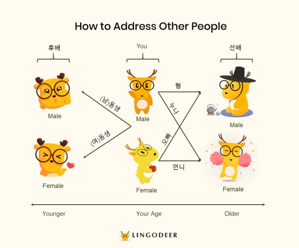 korean honorifics: how to address other people (non-family)
