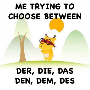 learn German articles der das die