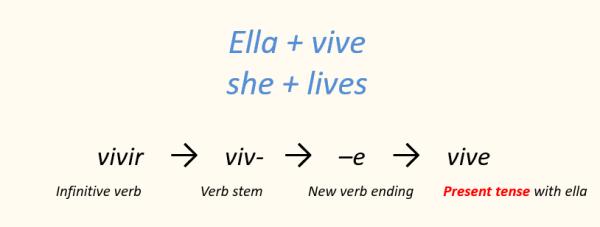Spanish verb conjugation present ella vive