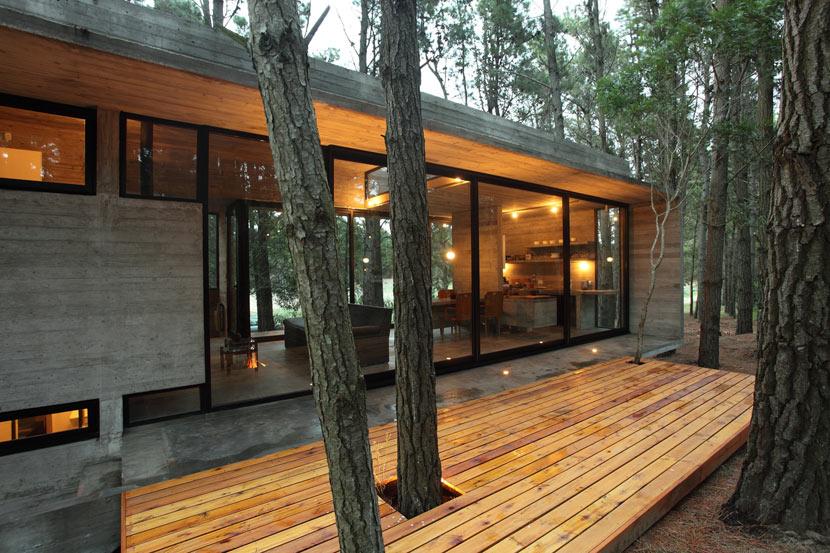 BAK Arquitetos: Harmonia Perfeita Entre Concreto E Natureza