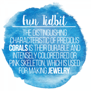 Fact about coral