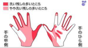 手の洗い残しが多い部分