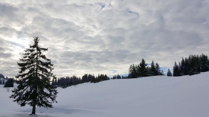 Skiarena Steibis im Allgäu