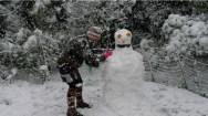 Cedric the Snowman