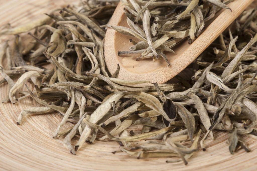 白茶-林奇苑