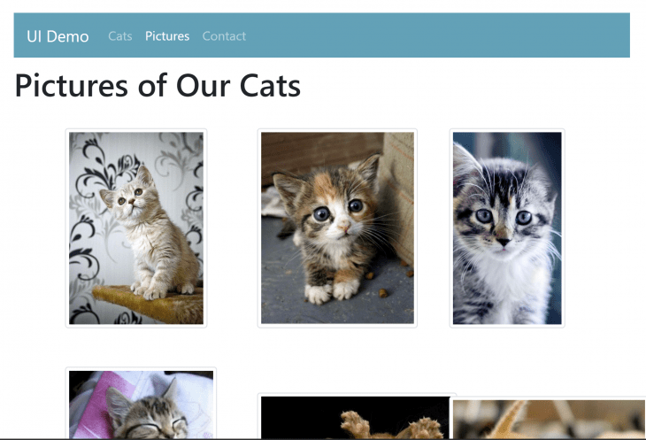 Cat images on Bootstrap Vue.