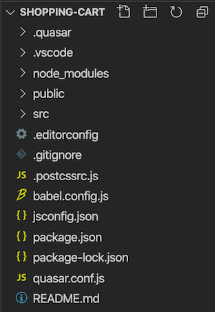 project folder including quasar, vscode, node modules,