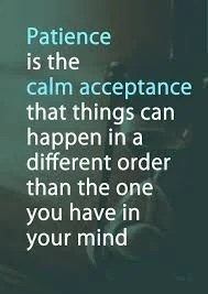 """Image with words """"Patience is the cal acceptance that things can happen in a different order than the one you have in your mind"""""""