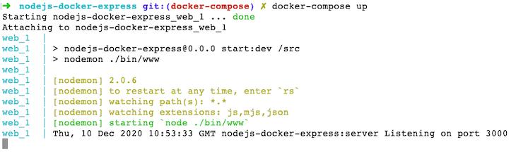 Running Our Docker Image
