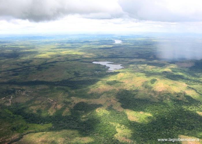 foresta-venezuela