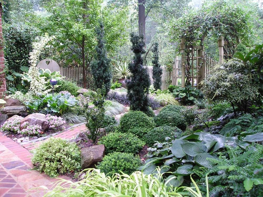 7 Design Tips for Shady Gardens - Longfield Gardens on Shady Yard Ideas id=76845