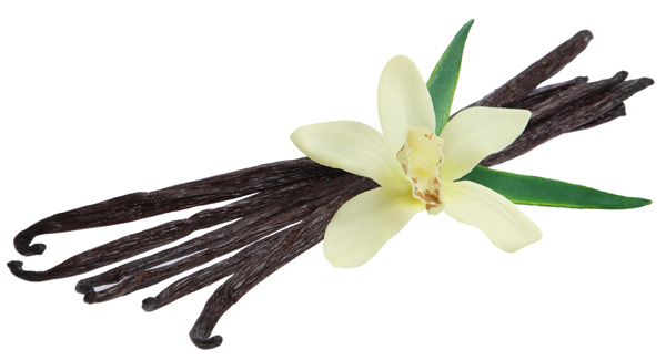 Vanilla With Orchid